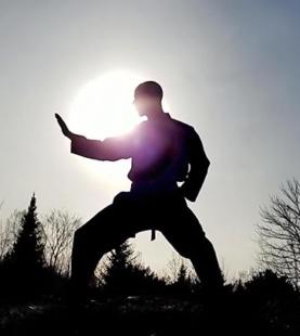 道家傳統太極拳三十七式 (C)