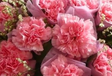 大安社大敬祝:母親節快樂!