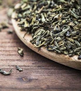 茶藝文化研習-A