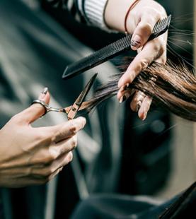 男女剪吹髮就業輔導